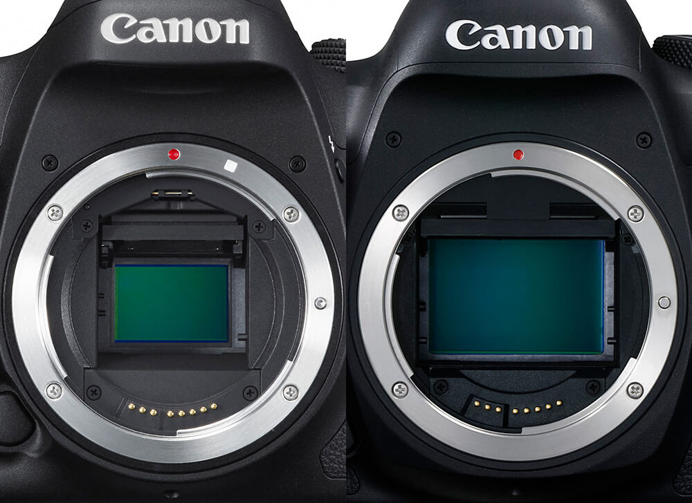 Лучшие полнокадровые фотоаппараты Рейтинг, советы как выбрать и какой купить