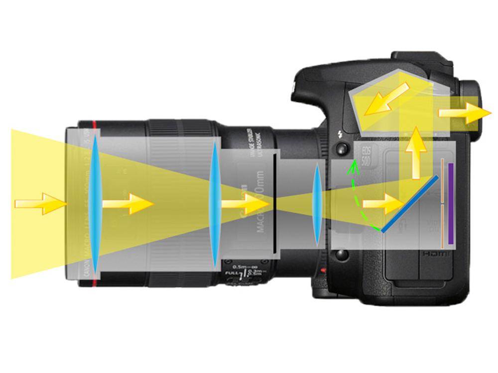 Лучшие зеркальные фотоаппараты для начинающих и путешествий, как выбрать и какой купить