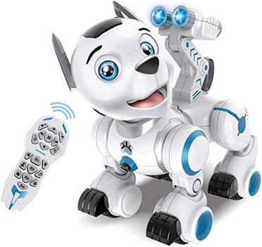 Собака-робот Дружок на р у