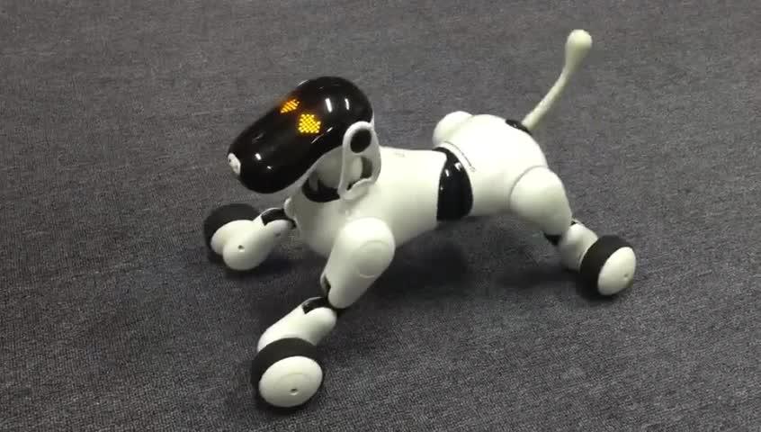 Лучшие игрушечные роботы и интерактивные собаки для детей