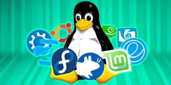 Что такое дистрибутив Linux и как его выбрать